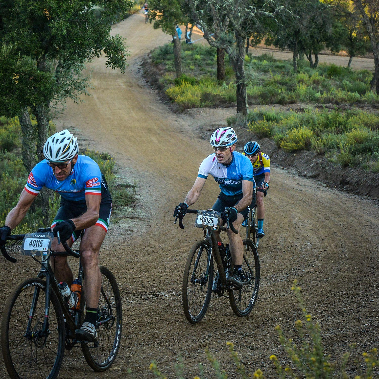 Mavic Gravel Roc 2018