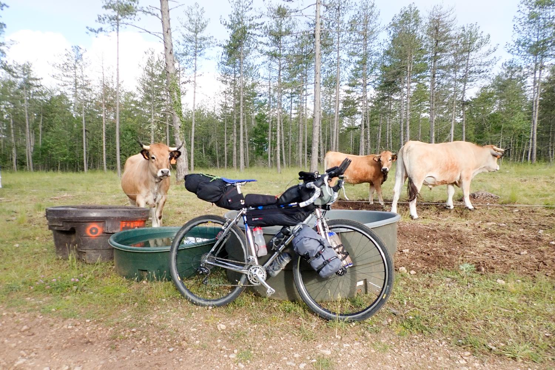 Fourches porteuses en bikepacking