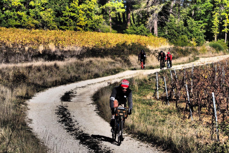Café du cycliste Alphonsine sur le Tour du Vaucluse Historique