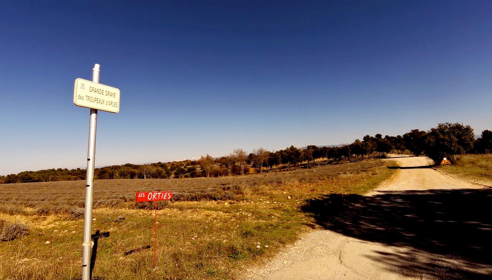 Chemins ruraux oubliés et menacés