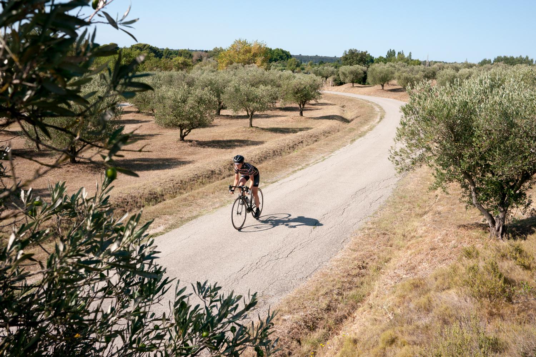 Cycling woman road Alpilles